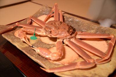 [画像がありません]間人蟹